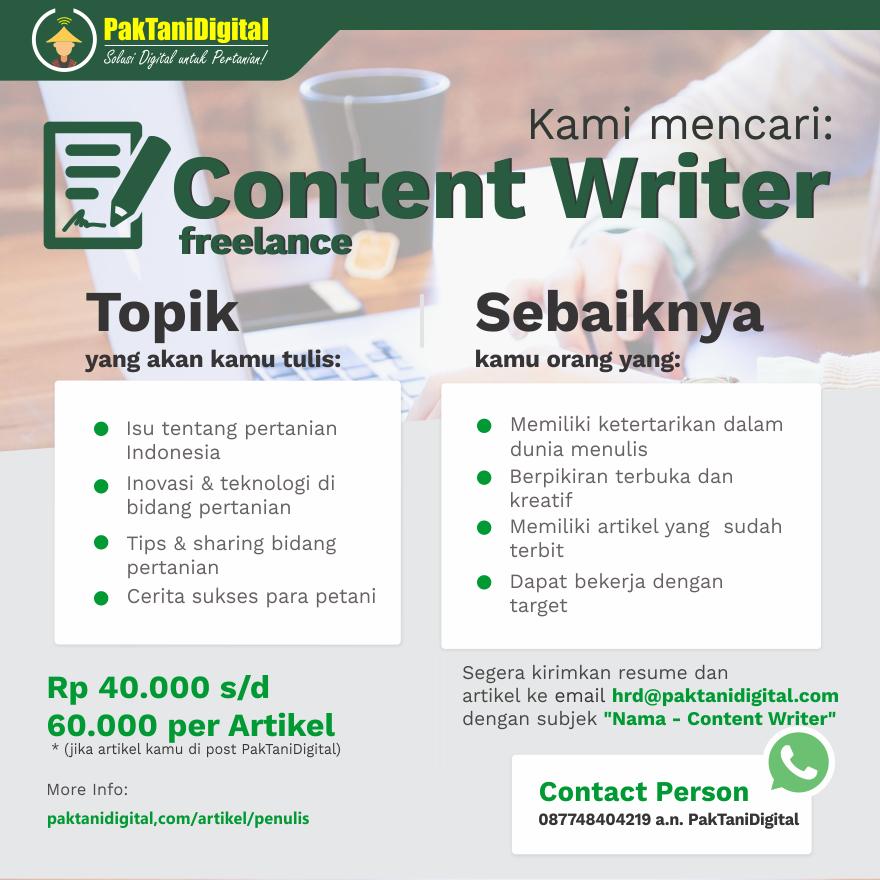 content writer freelance pak tani digital