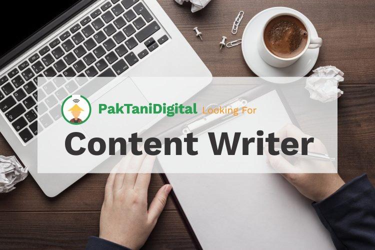 lowongan content writer