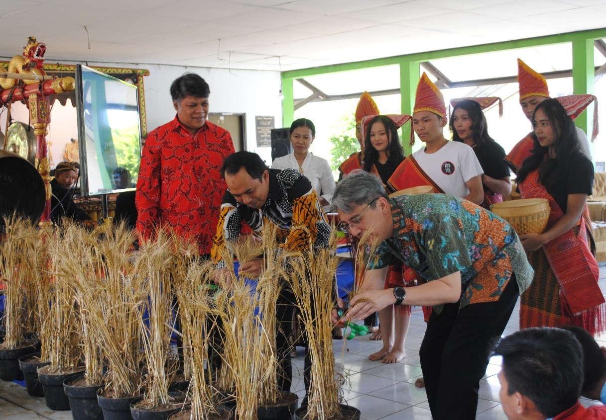 Fakultas Pertanian dan Bisnis UKSW Membudidayakan Gandu Tropika