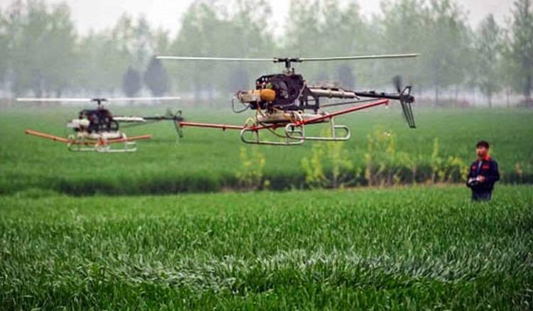 Drone lahan sawah