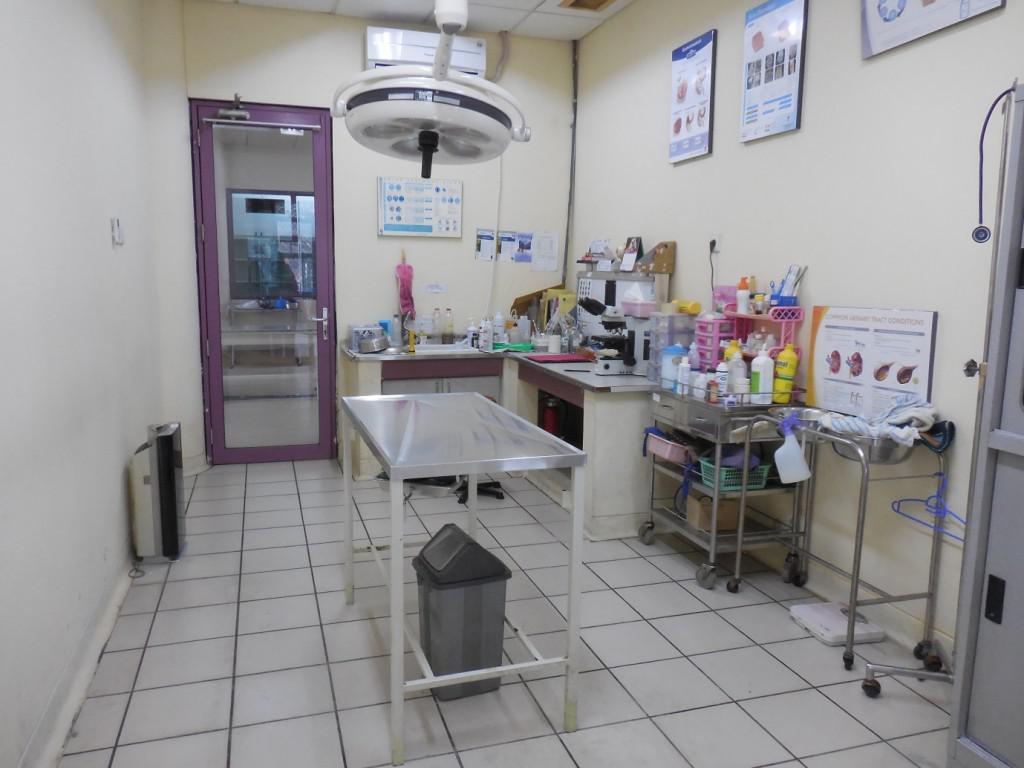 Rumah Sakit Hewan Pendidikan (RSHP) IPB