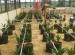 4 Inovasi Pertanian oleh Mahasiswa UGM