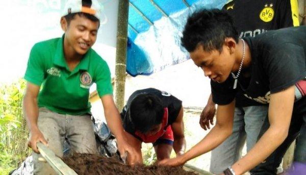 inovasi pertanian indonesa
