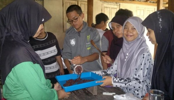 inovasi pertanian di indonesia