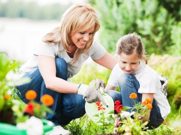 berkebun untuk mama muda