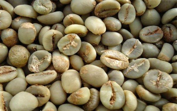 kopi indonesia sangat diminati