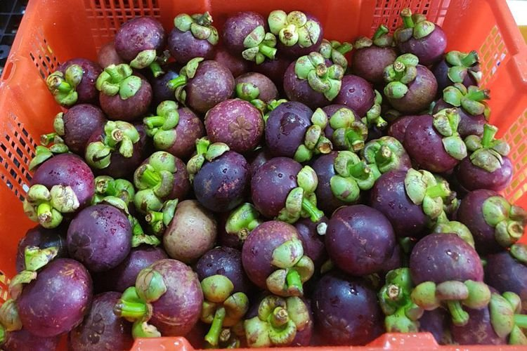 pasar manggis di dunia