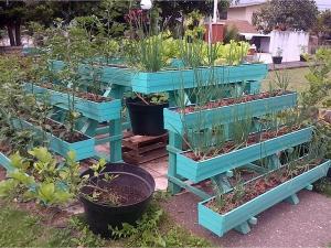 memanfaatkan pekarangan untuk rumah pangan lestari