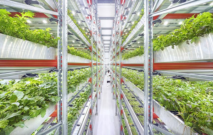 Indoor Farming, Sistem Pertanian Modern
