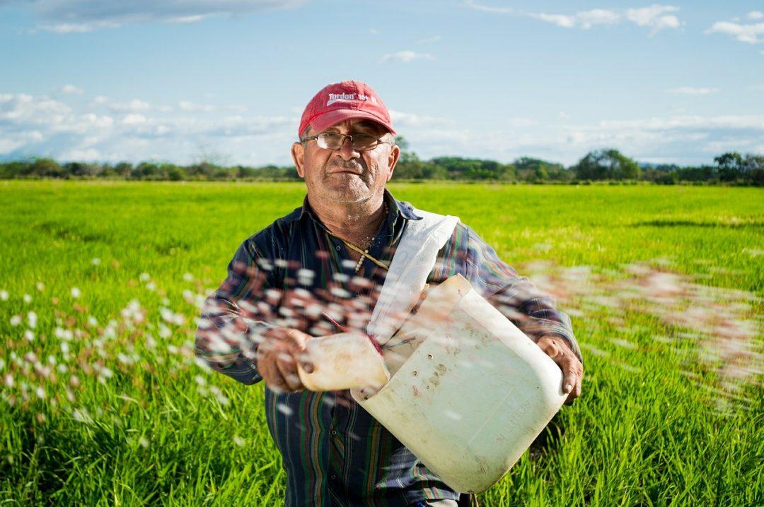 Keuntungan Menjadi Seorang Petani