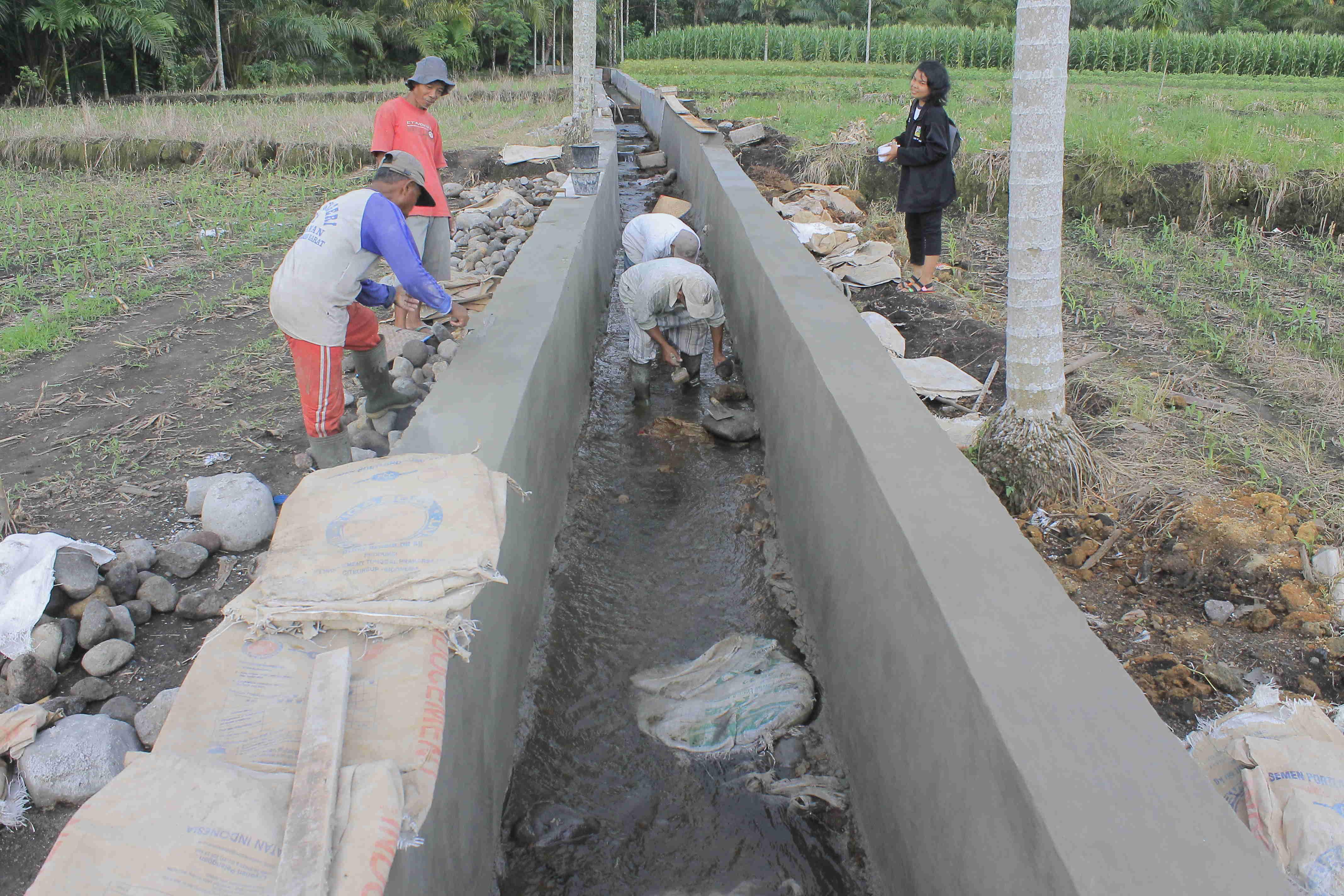 Perbaikan jaringan irigasi program RJIT