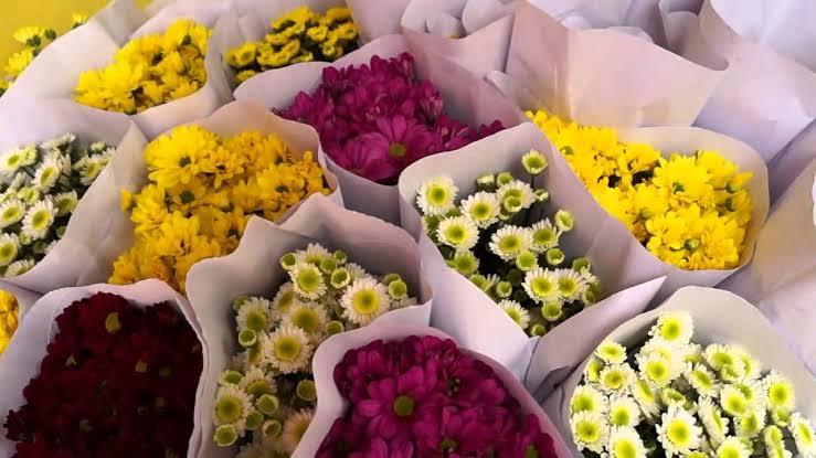 Produksi Bunga Potong di Indonesia
