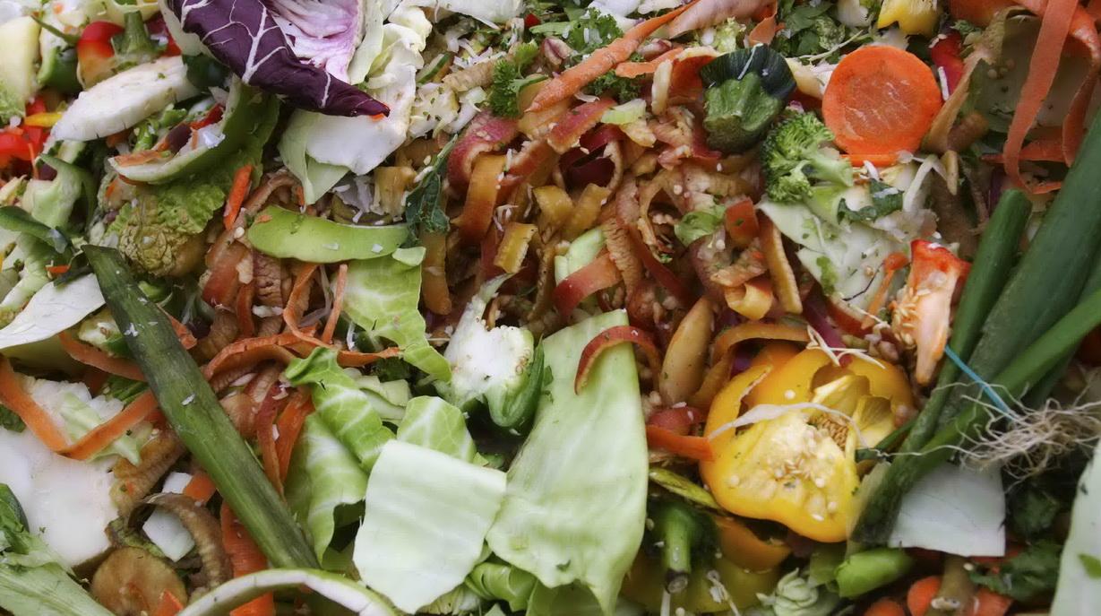 Sayur-Sayuran, Sampah Organik Rumah Tangga