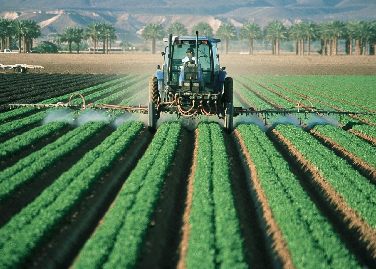Cara Tepat Menggunakan Pestisida