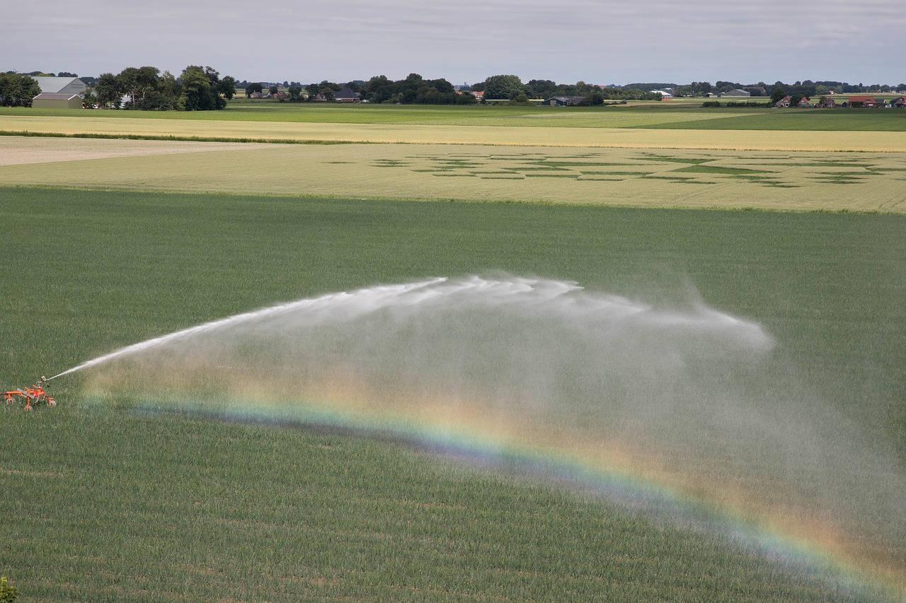 Menyemprotkan Pestisida ke Lahan Pertanian