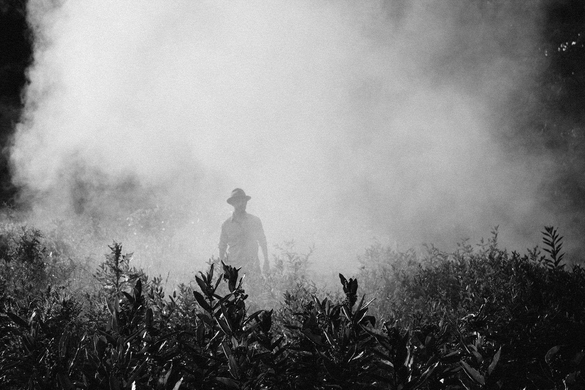 Penggunaan Pestisida di Lahan Pertanian