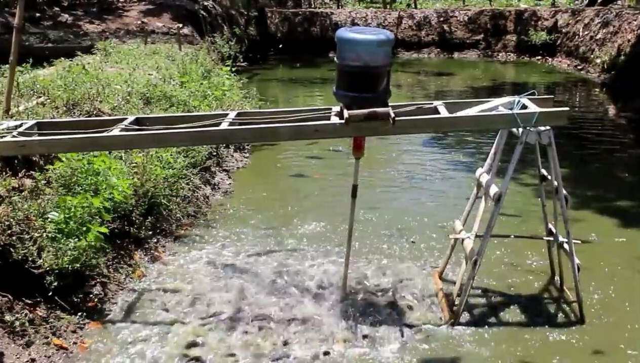 Alat Pemberi Pakan Ikan Otomatis