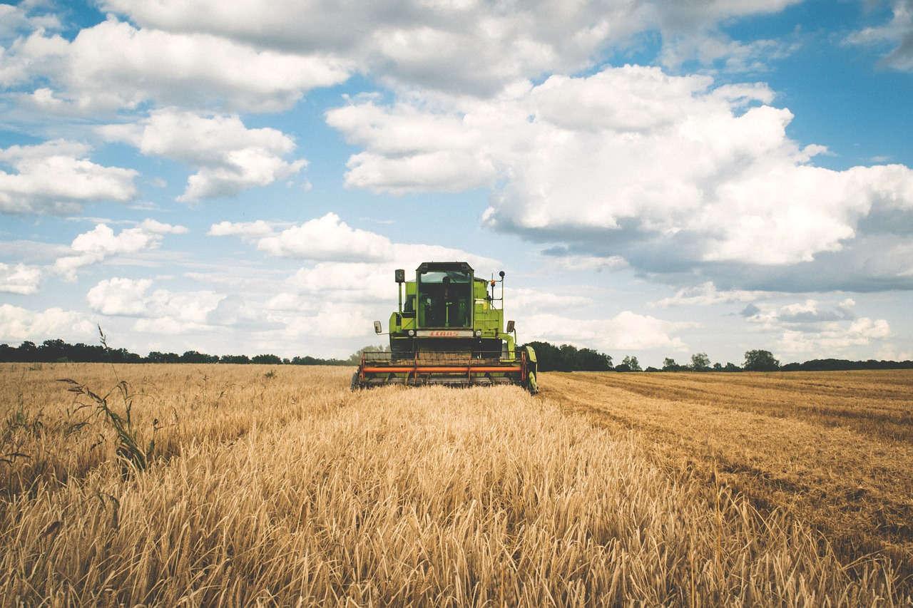 Teknologi Tepat Guna yang Dibutuhkan oleh Petani Padi