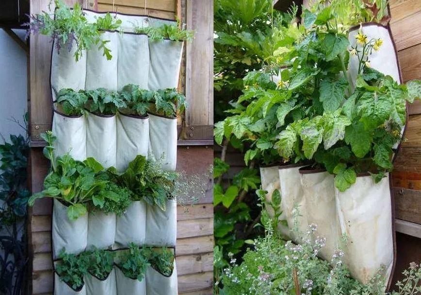 Terpal Plastik pada Kebun Vertikal