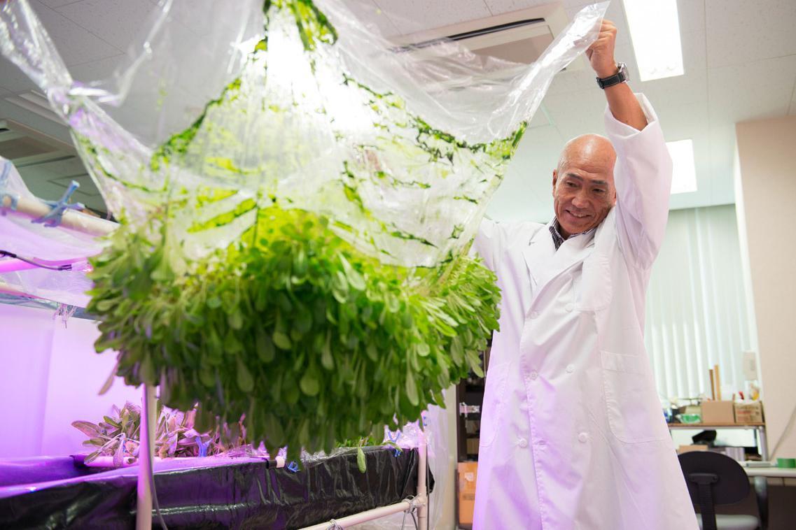 Kecanggihan Teknologi Film Farming