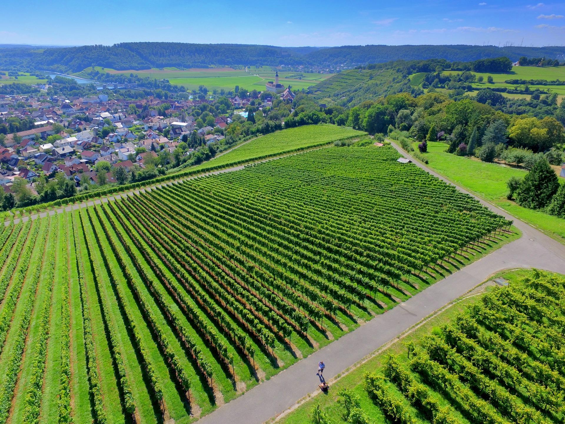 Manfaat drone untuk melihat area lahan