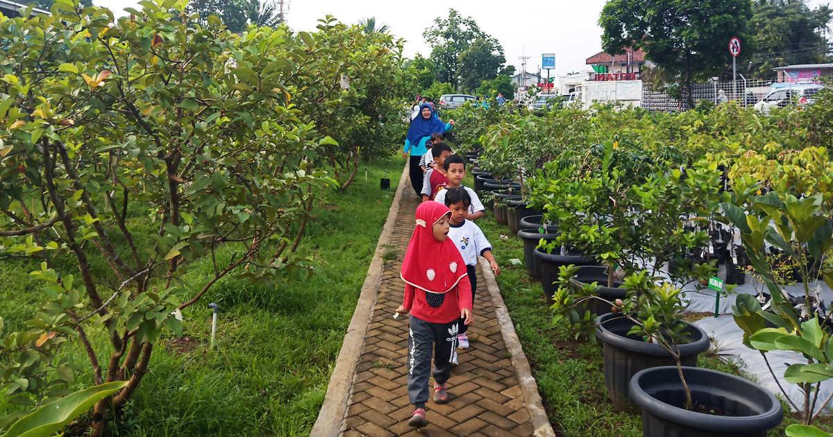 Pelatihan dan Praktek Kultur Jaringan Agroedutourism IPB
