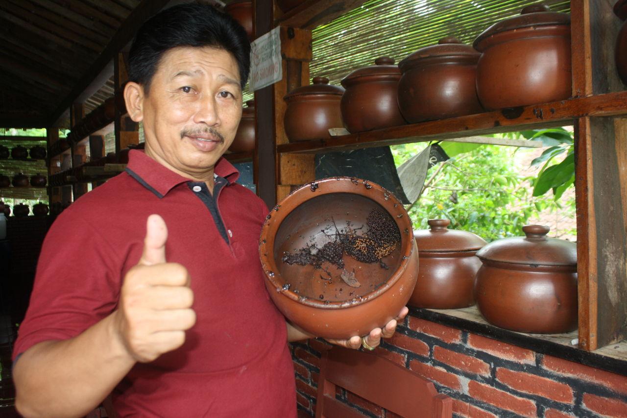 Beternak Lebah Trigona, Peluang Bisnis Sampingan yang Menjanjikan
