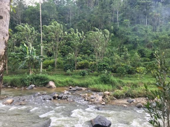 Kabupaten Solok Selatan