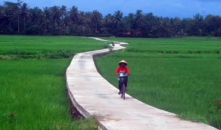 Jalan Sawah
