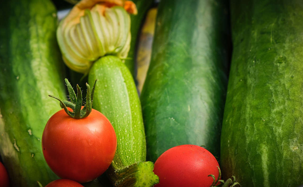 6 Jenis Pola Tanam Polikultur yang Sering Digunakan Petani