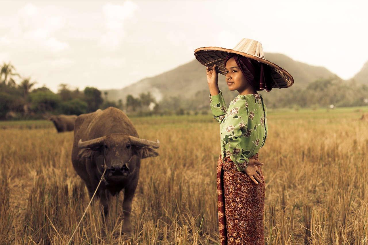 Petani Muda Sebagai Harapan Pertanian Indonesia