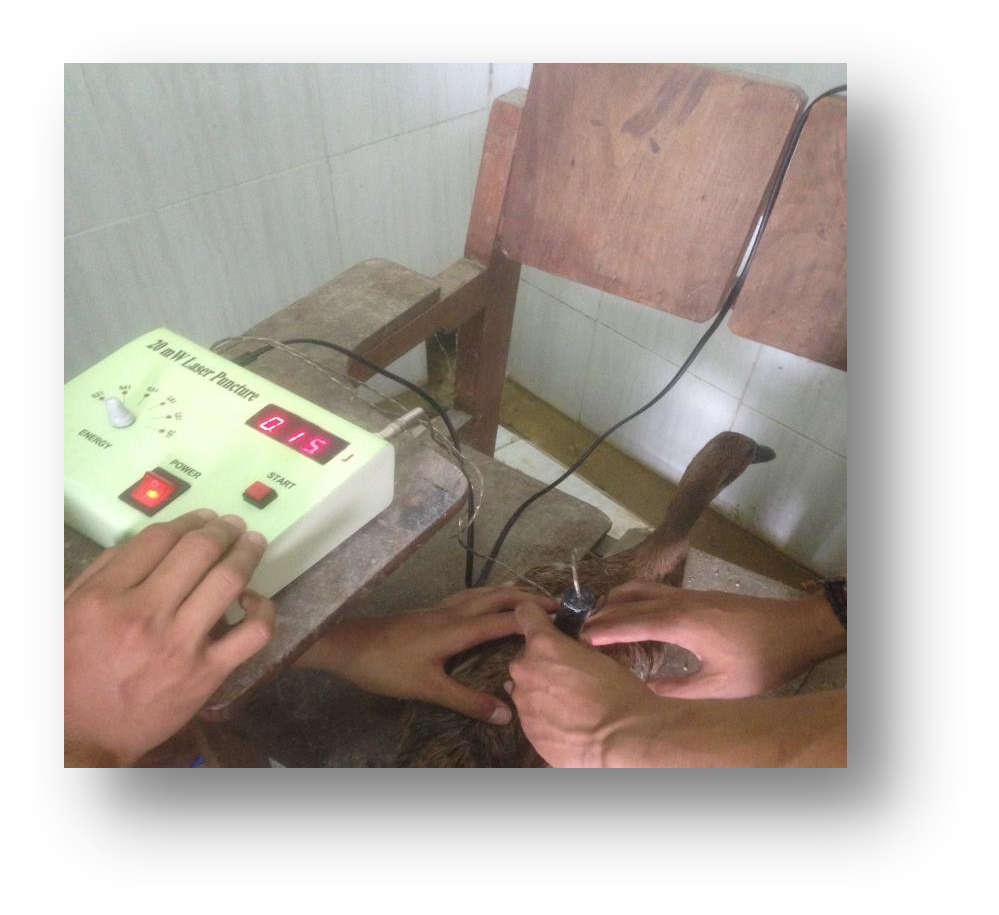 Teknologi laserpunktur