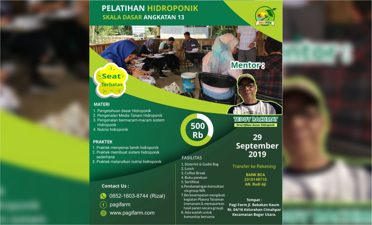 Pelatihan Hidroponik Pemula oleh PAGI FARM!