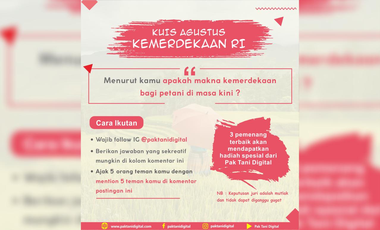 Kuis Agustus Kemerdekaan Indonesia