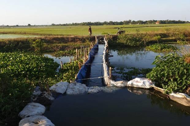 Sodetan sungai petani Indramayu
