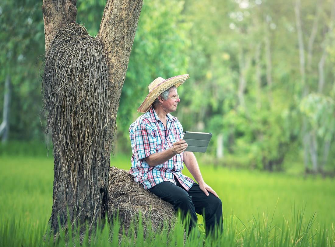 Pentingnya Pembukuan Akuntansi untuk Petani