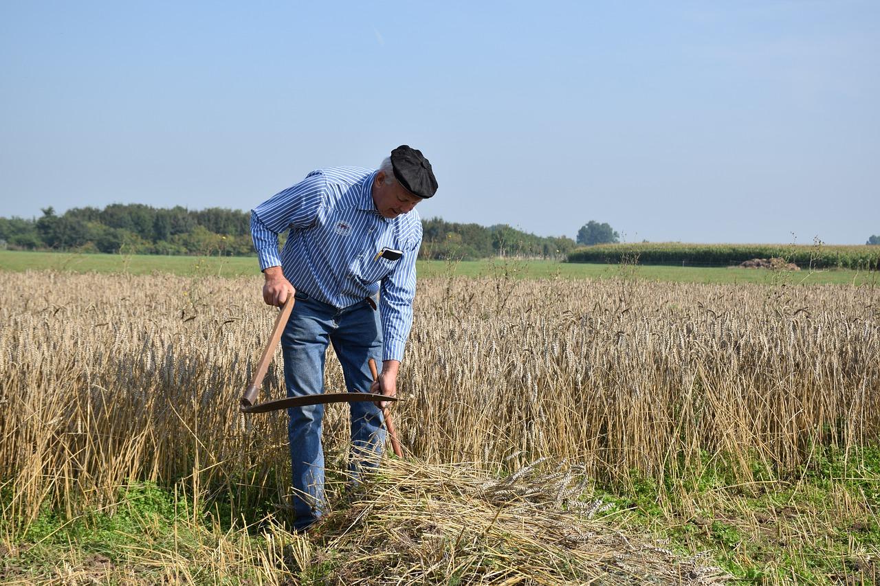 Pemberian insentif lahan pertanian