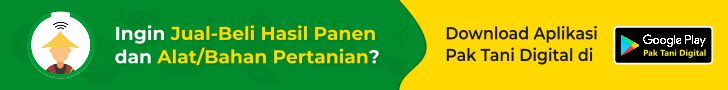 banner web PTD