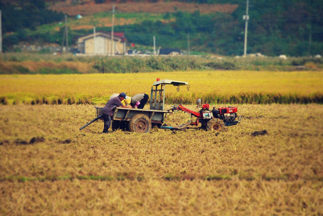 Pemberian insentif lahan pertaniana