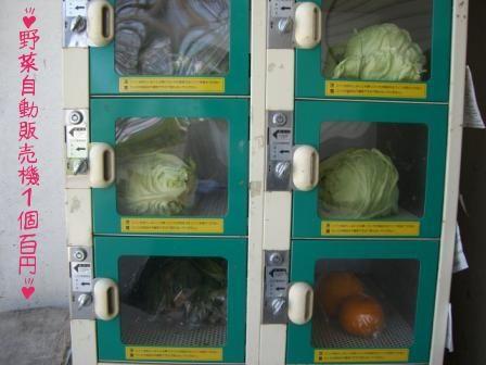 Mesin otomatis penjual sayur dan buah