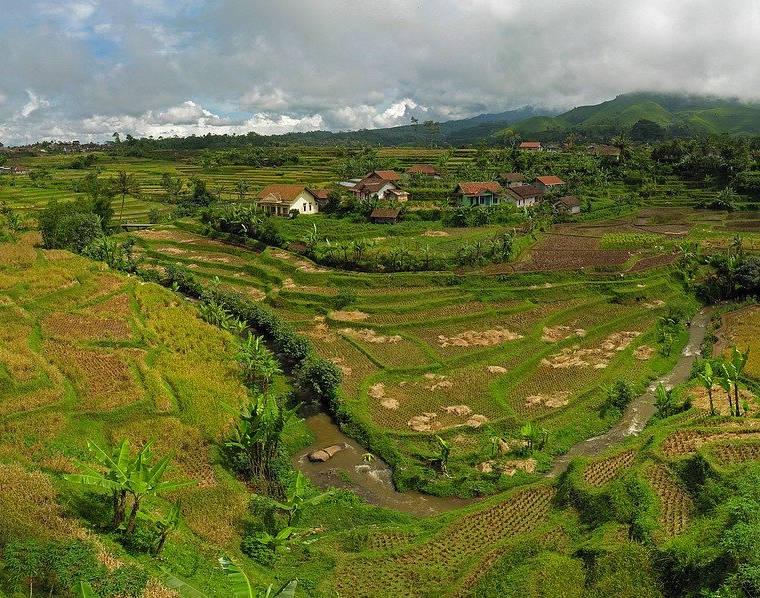 Kearifan Lokal Pertanian - GU