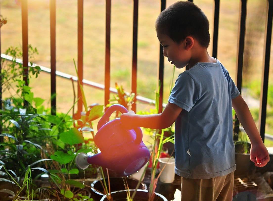 Tani dan Ternak sebagai Obat Kecanduan Gadget pada Anak - GU