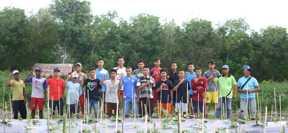 petani muda