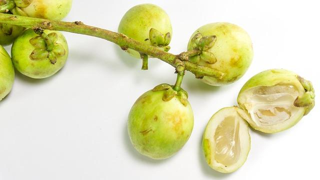 buah langsat