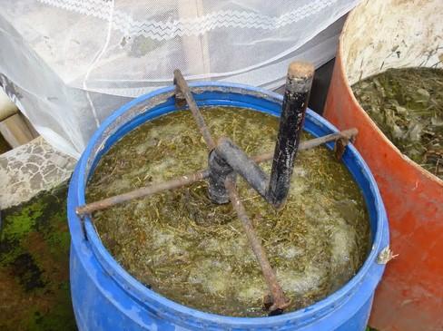 pupuk organik cair (poc)