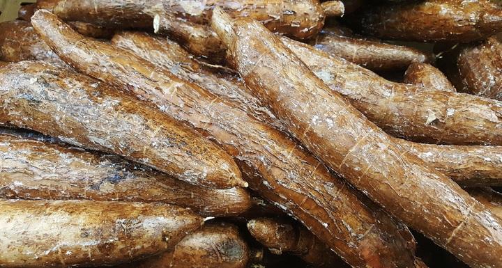 tepung singkong (mocaf)