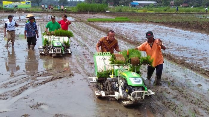 alat pertanian