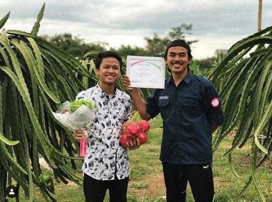 petani sukses