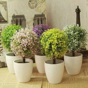 gambar-bunga-bunga